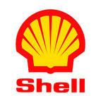 Shell Ondina